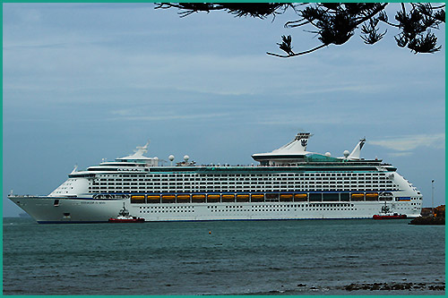 Napier-Shore-Excursions-with-Hawkes-Bay-Scenic-Tours