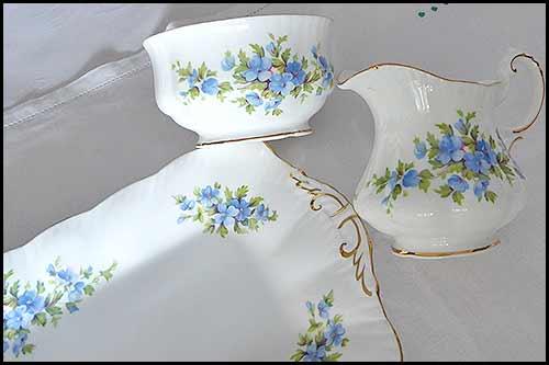 Paragon Fine china english flowers aubrtia vintage china hire napier nz