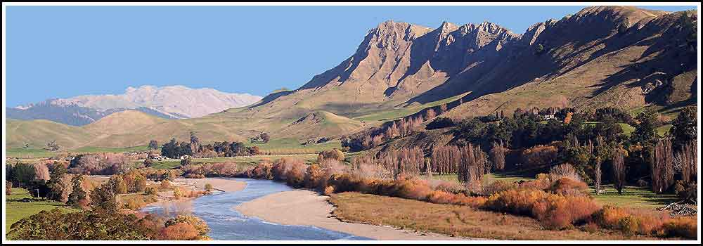 Some of the best scenery in the country on tours with Hawkes Bay Scenic Tours