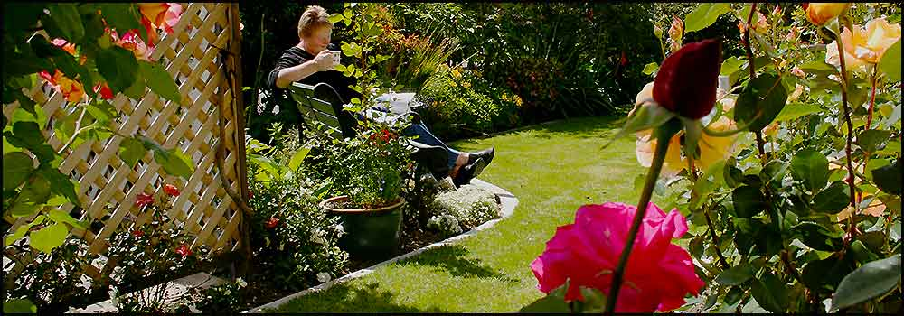 Relax in award winning gardens at Nest Haven Bed and Breakfast Napier New Zealand