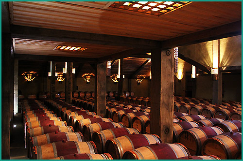 Napier-Wine-or-Wine-and-Beer-Tours-with-Hawkes-Bay-Scenic-Tours-napier