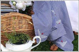 gingham-picnic-cloth-for-hire-high-tea-hire-napier